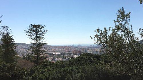 Botanische tuin in Malaga