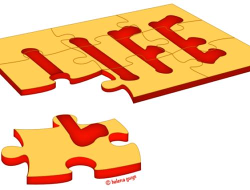 Lifepuzzle